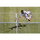 French Tennis Players: Jo-Wilfried Tsonga, Fabrice Santoro, Gilles Simon, Mary Pierce, Ga L Monfils, Micha L Llodra...